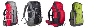 Wildcraft Backpack (1)