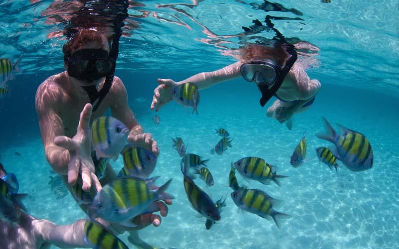 snorkelling.