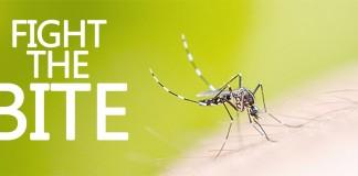 keep away mosquitoes